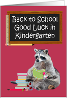 Back To School, Kindergarten, Raccoon Holding A Book card
