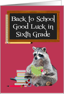Back To School, Sixth Grade, Raccoon Holding A Book card