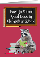 Back To School, Elementary, Raccoon Holding A Book card