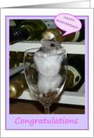 Hamster in wine glass - Happy Anniversary card
