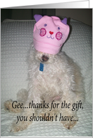 humor dog thank you gift card