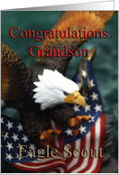 Eagle Scout~Grandson, Eagle & U. S. Flag card