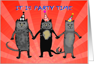 Invitation to divorce party,cats.humor PARTY HATS card
