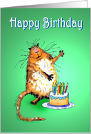 Happy Birthday ,Veterinarian, crazy cat and cake and candles card