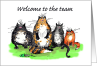 Welcome to the team, cats, humour card
