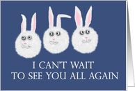 can't wait to see you all again, three cute white rabbits card