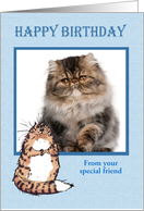 Happy Birthday to dog from cat, photo frame, card