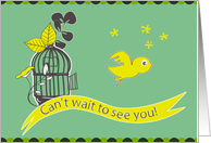 can't wait to see you, a cute bird escape from its cage to meet you card