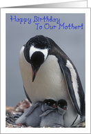 Happy Birthday to our mother, penguin with two adorable chicks card