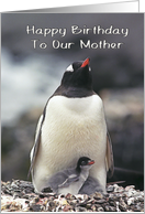 Happy Birthday To Our Mom, Penguin with two chicks card
