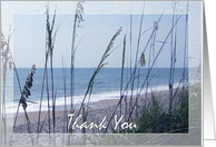 Thank you - Business - Seaside - Beach - Dunes card
