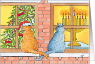 Interfaith Curious Cats with Christmas Tree and Menorah card