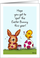 Chick is spotting the Easter Bunny - Humorous Easter Card