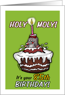Humorous - It's your 85th Birthday - Holy Moly Cartoon - eighty-fifth card