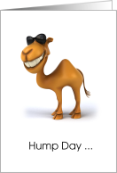 Cool Camel Hump Day Card