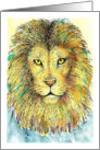 Any Occasion Colorful Lion Portrait card