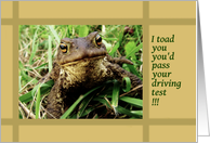 Congratulations, passed driving test, toad card