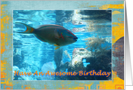 Birthday Tropical Fish card