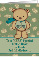 Happy Birthday to a VERY Special Little Bear, 2nd birthday, teddy. card