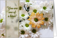 You are one of a kind! Birthday, white daisies, single peach daisy. card
