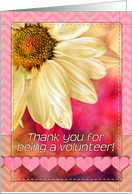 Thank you for being a volunteer! Golden daisy macro, pink, chevron card