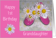 Pink Shoes & Daises Granddaughter's 1st Birthday card