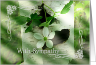 Sympathy Flower and Birch Tree Card