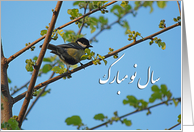Happy Norooz - bird on blooming tree card