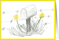mailbox with yellow flowers card