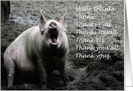 Thank you pig card