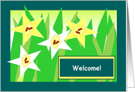 Welcome! - Yellow & White Star Daffodils card