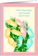 Sweet Thoughts of You - Across the miles, Sweet Peas card