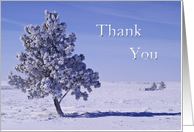 Thank You for Christmas Gift, Winter On the Great Plains card