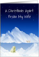 Christmas apart wife, polar bears on ice under stars, parted by water, card