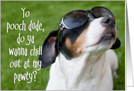 Dog Birthday Party Invite - Jack Russell Terrier in Sunglasses card