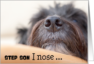 Step Son Humorous Birthday Card - The Dog Nose card