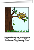 Congratulations on Passing Your Professional Engineering Exam (PEE) card