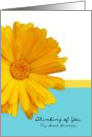 Thinking of You Great Grandpa, Trendy Summer Blue,Yellow, Daisy card
