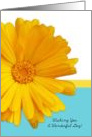 Wishing You A Wonderful Day, Trendy Summer Blue And Yellow Daisy card
