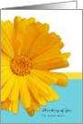 Thinking of you Sister, Trendy Summer Blue And Yellow, Daisy card