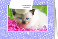 Cute Kitty Kindergarten Graduation Congratulations card