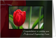 Congratulations On Passing Professional Engineering Exam Red Tulip card