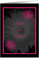 Save the Date-Pink and black card