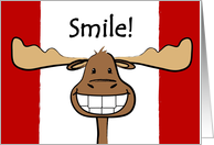 Canada Day, Canadian Flag, Happy Moose Card