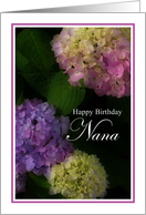 Happy Birthday Nana, Pretty Hydrangia Card