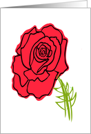 Thinking of You Red Rose card