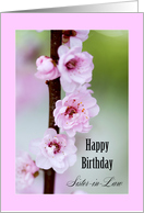 Happy Birthday Sister-in-Law - Cherry Blossoms card