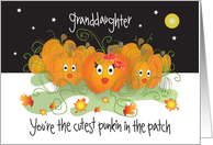 Halloween for Granddaughter, Cutest Punkin in the Patch card