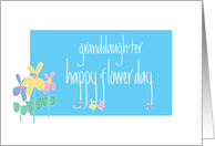 Happy May Day for Granddaughter, Happy Flower Day card