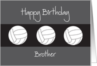 Birthday for Brother with Trio of Volleyball Balls card